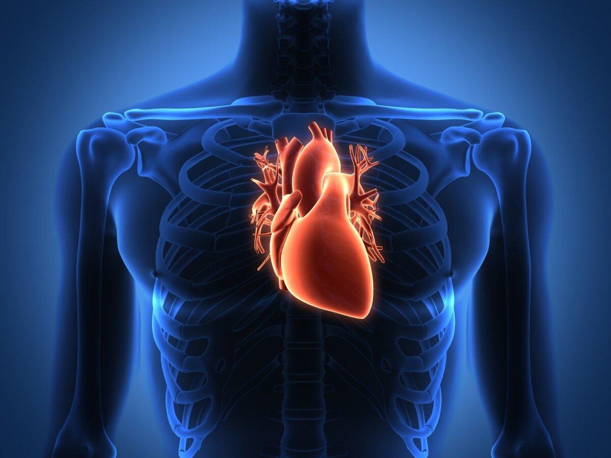 ar žinojai širdies sveikatos faktus