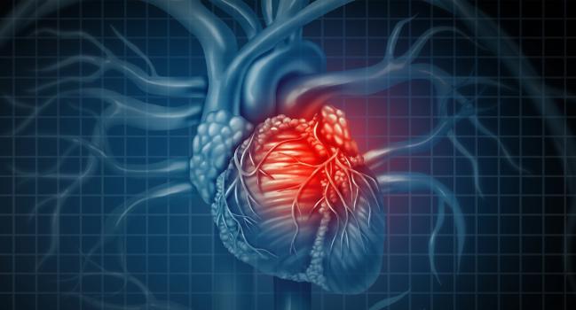 širdies ritmo tikslinė širdies ir kraujagyslių sveikata