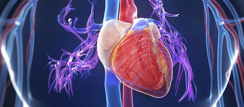Dažna diagnozė – širdies ligos