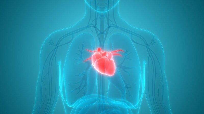 2 ir 3 stadijos hipertenzija