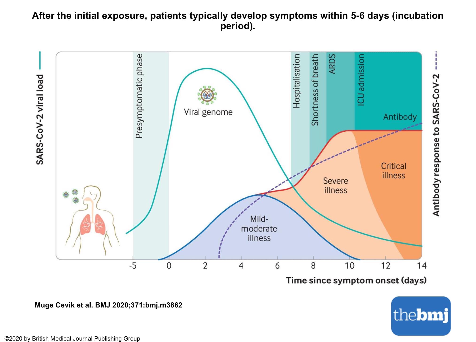 Kaip greitai sumažinti spaudimą namuose - Anatomija November
