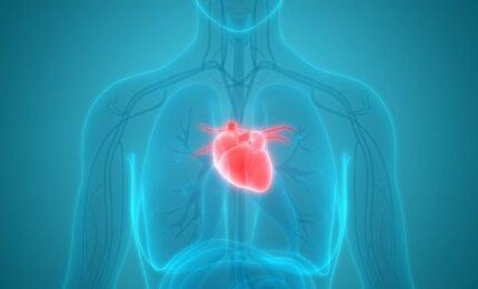6 ligos, kurios kelis kartus padidina širdies priepuolio riziką
