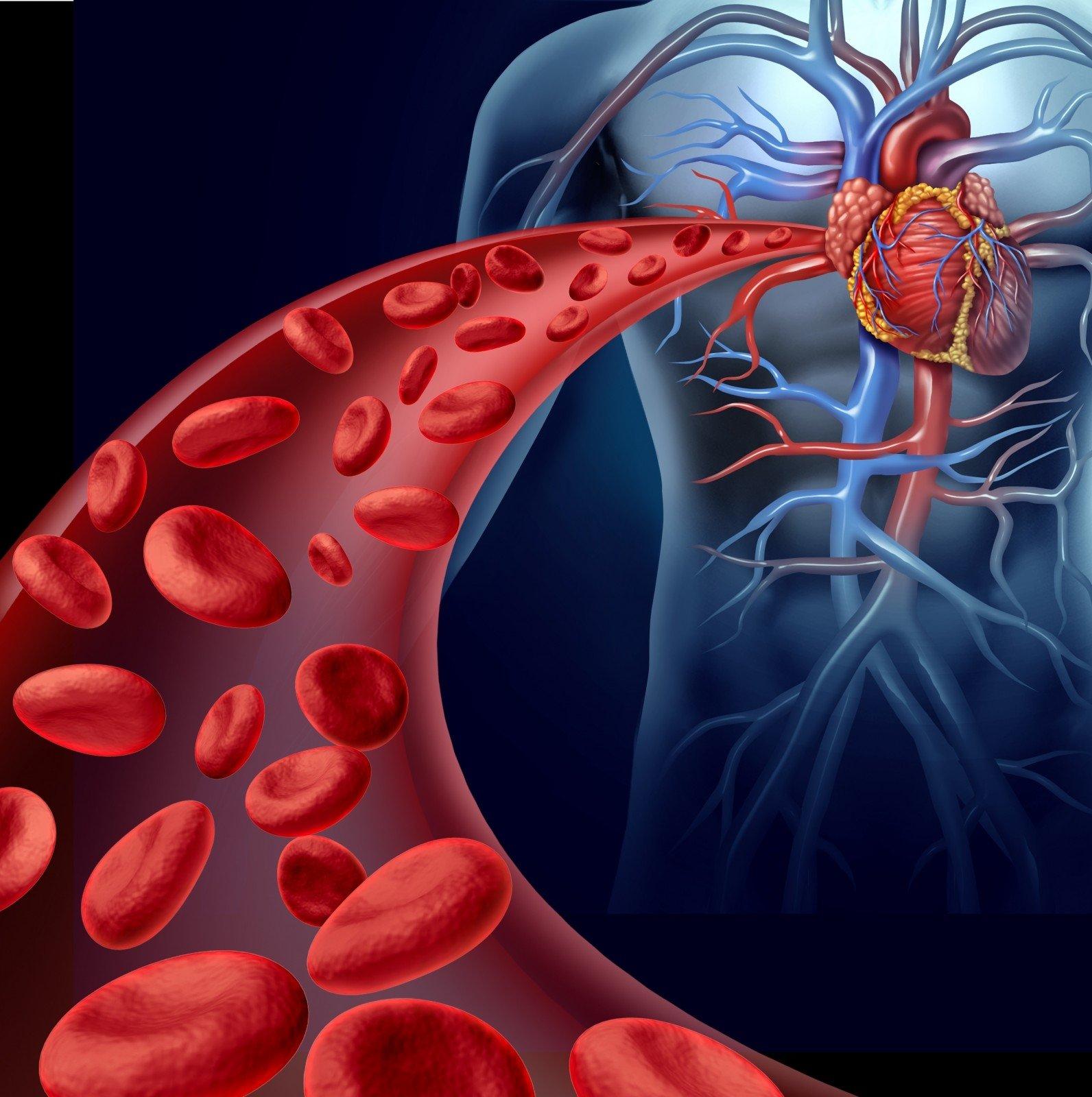 dietinis cholesterolis riboja širdies sveikatą)
