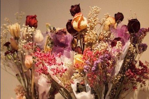 irgi gėlės nuo hipertenzijos hipertenzijos gydymo stadija