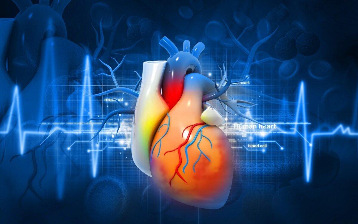 širdies liga Amerikoje ir Europos sveikata)