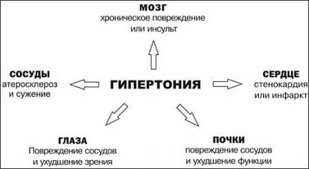 hipertenzijos meilės taškai)