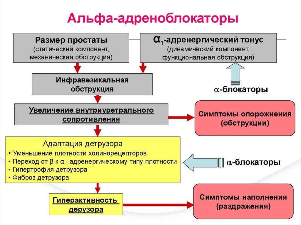bradikardijos hipertenzija ir gydymas)