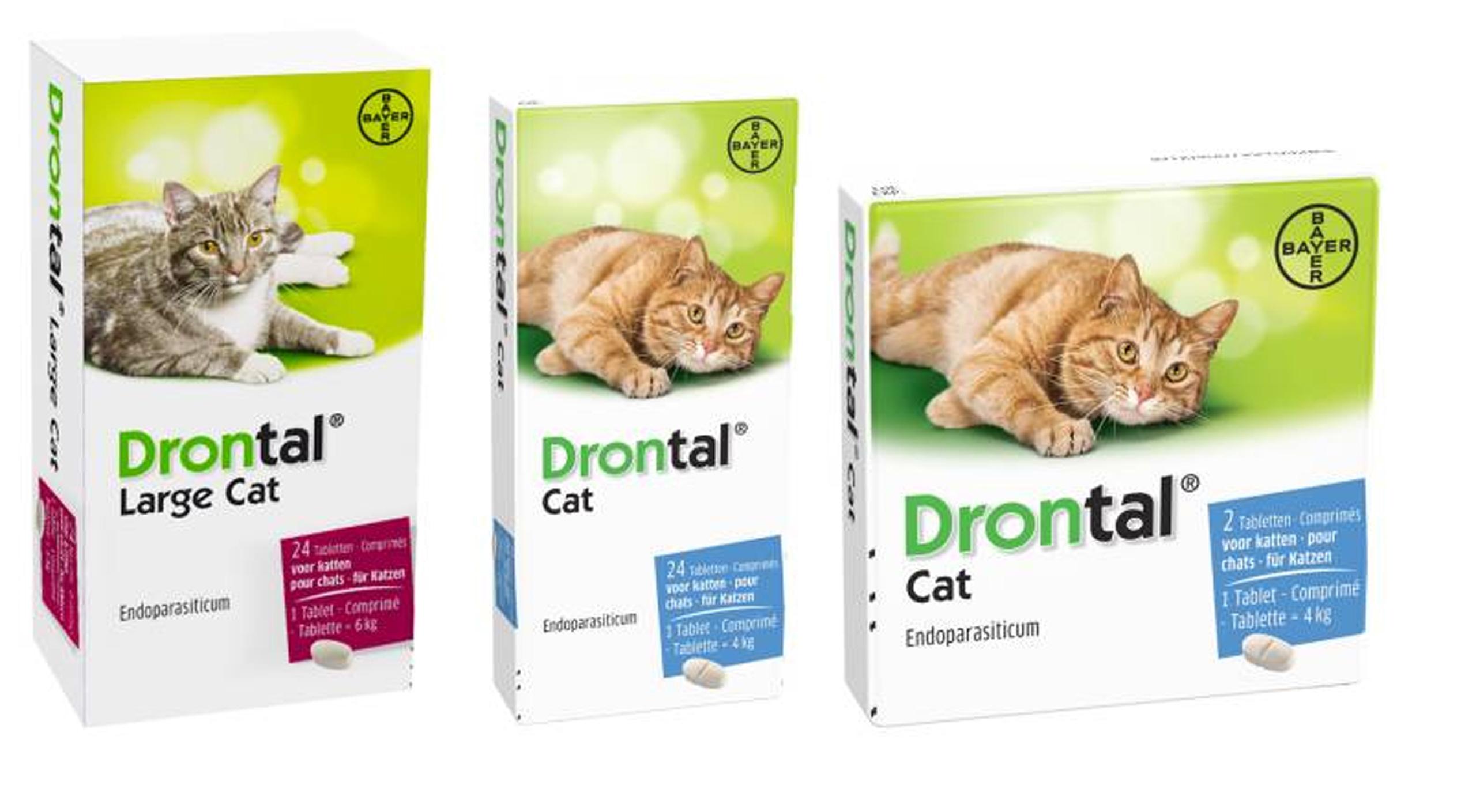 kačių širdies sveikatos papildai)