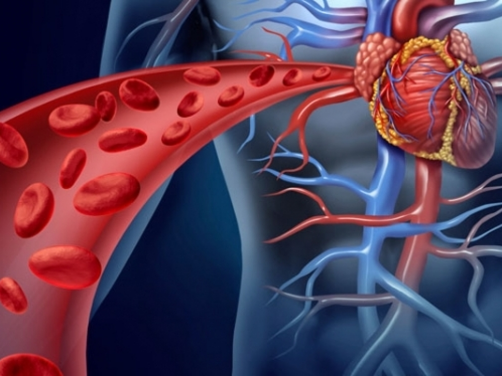 kraujagyslės su hipertenzijos simptomais)