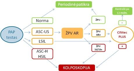 hipertenzija su ŽPV)