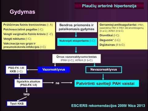 hipertenzijos gydymo paskaita
