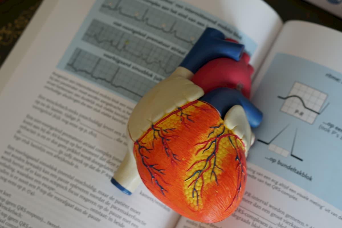 kokie yra hipertenzijos tyrimai)