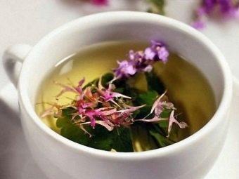 Kiekvienam zodiako ženklui - savi augalai | Medicina visiems