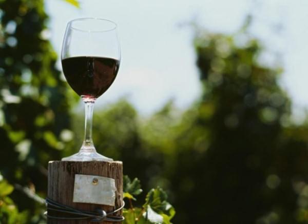 sausi vynai nuo hipertenzijos