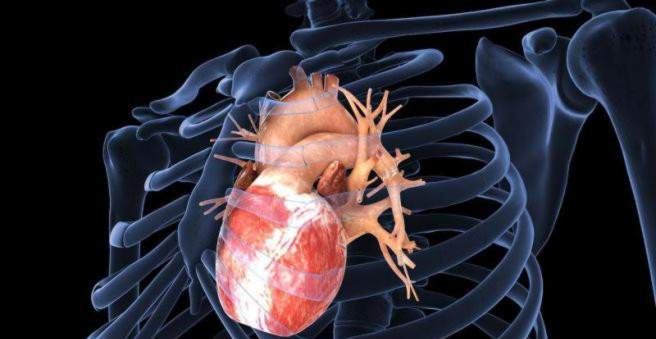 koronarinė liga daro įtaką širdies gyvenimo būdui)