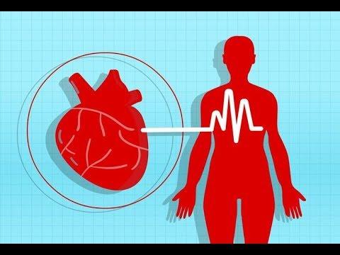 hipertenzija ir kraujagyslės)