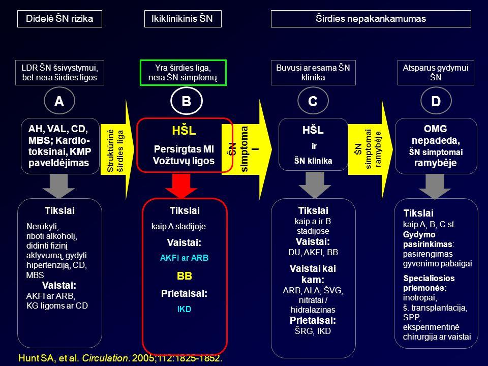 Lercanidipino apsauginis poveikis nuo organų taikinių pažeidimo sergant hipertenzija