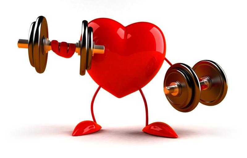 Širdis ir kaip ją sustiprinti - jusukalve.lt
