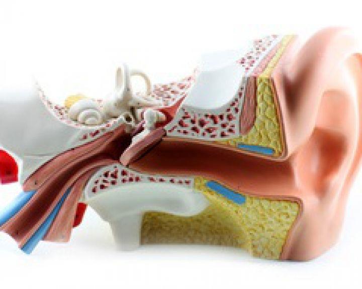 Klausos nervo neuritas: simptomai, gydymas
