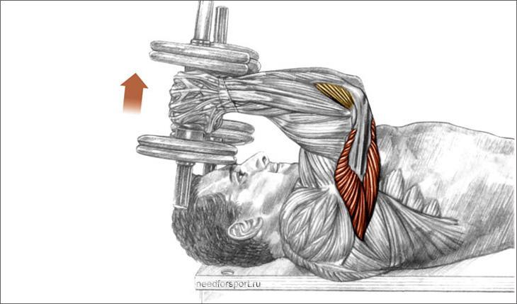 pratimai galvai nuo hipertenzijos