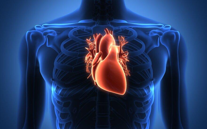 Ko moterys dar nežino apie savo širdį?