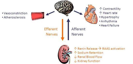 Ar hipertenzija gali sukelti galvos skausmus?