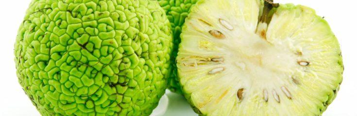 Adomo obuolys ir hipertenzija