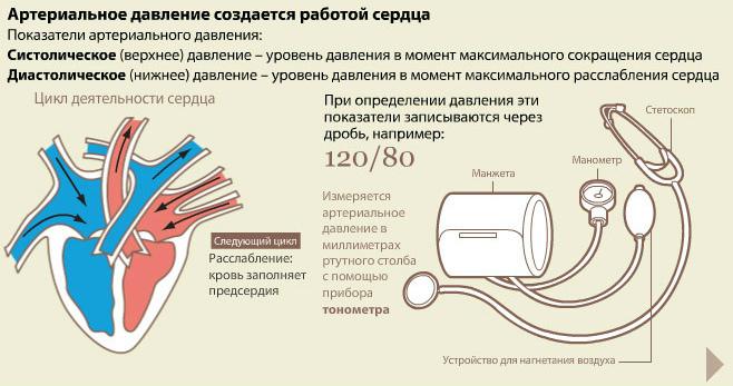 hipertenzija spaudimas liaudies gynimo)