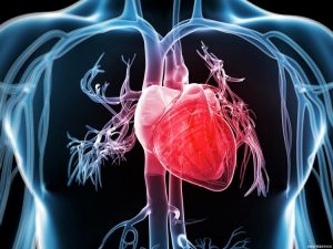 geriausi širdies sveikatos kraujo tyrimai)