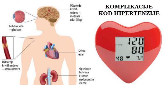 ananyeva olesya. hipertenzija