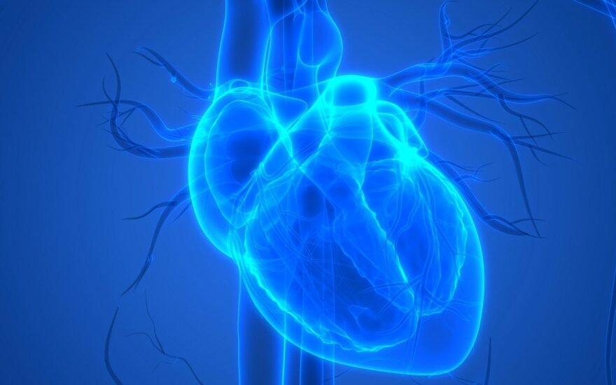 koks yra lipoproteinų ir širdies sveikatos santykis
