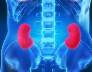 hipertenzija dializuojant inkstus kokios yra hipertenzijos atsiradimo priežastys