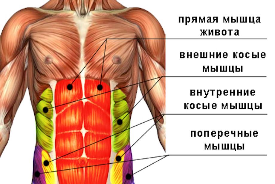 ar galima atlikti lentos pratimą sergant hipertenzija