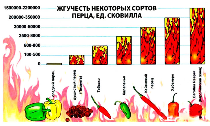 galite valgyti aitriąją papriką su hipertenzija)