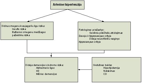hipertenzijos schema)