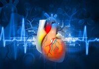 natrio kalio širdies sveikata