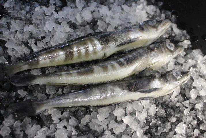 kokia žuvis tinka hipertenzijai