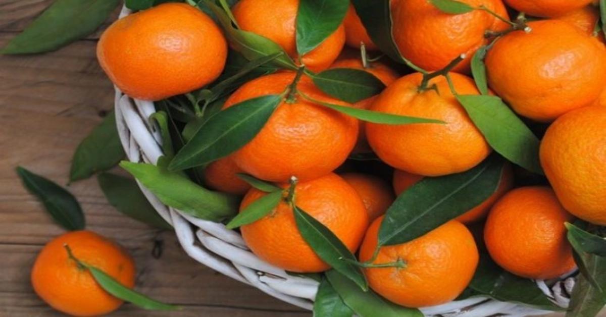 hipertenzija ir mandarinai
