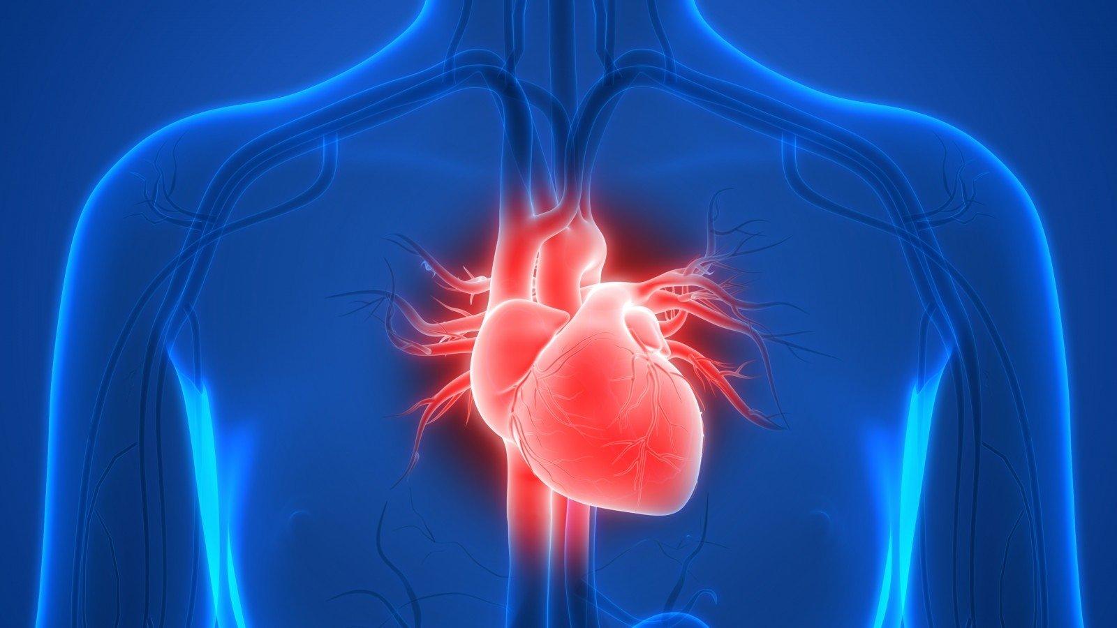 širdies ar svorį širdies sveikatai)