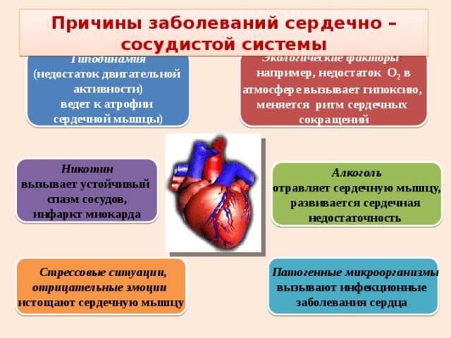 širdies ir hipertenzijos liaudies gynimo priemonėms