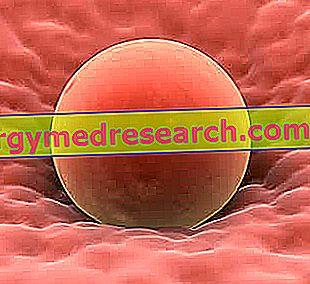 kiaušinėlis nuo hipertenzijos)
