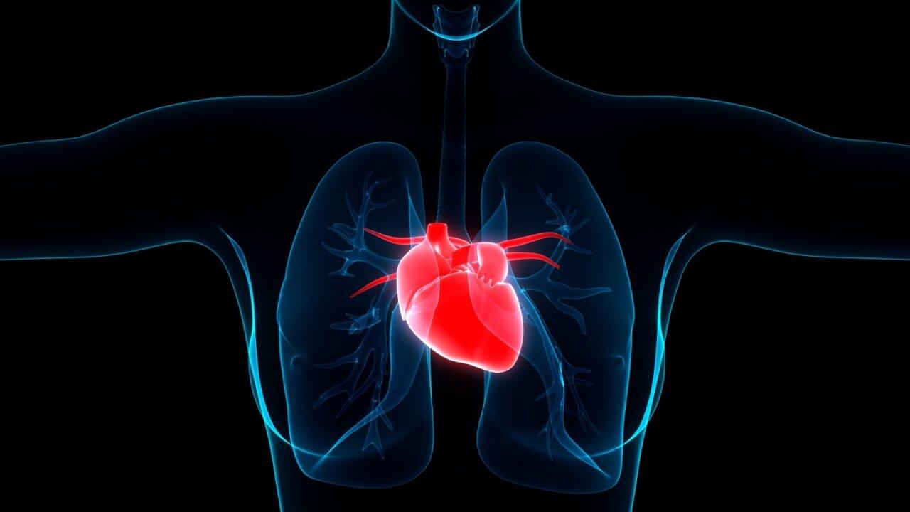 vitaminai skatina širdies sveikatą
