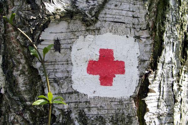 hipertenzijos gydymas degutu)