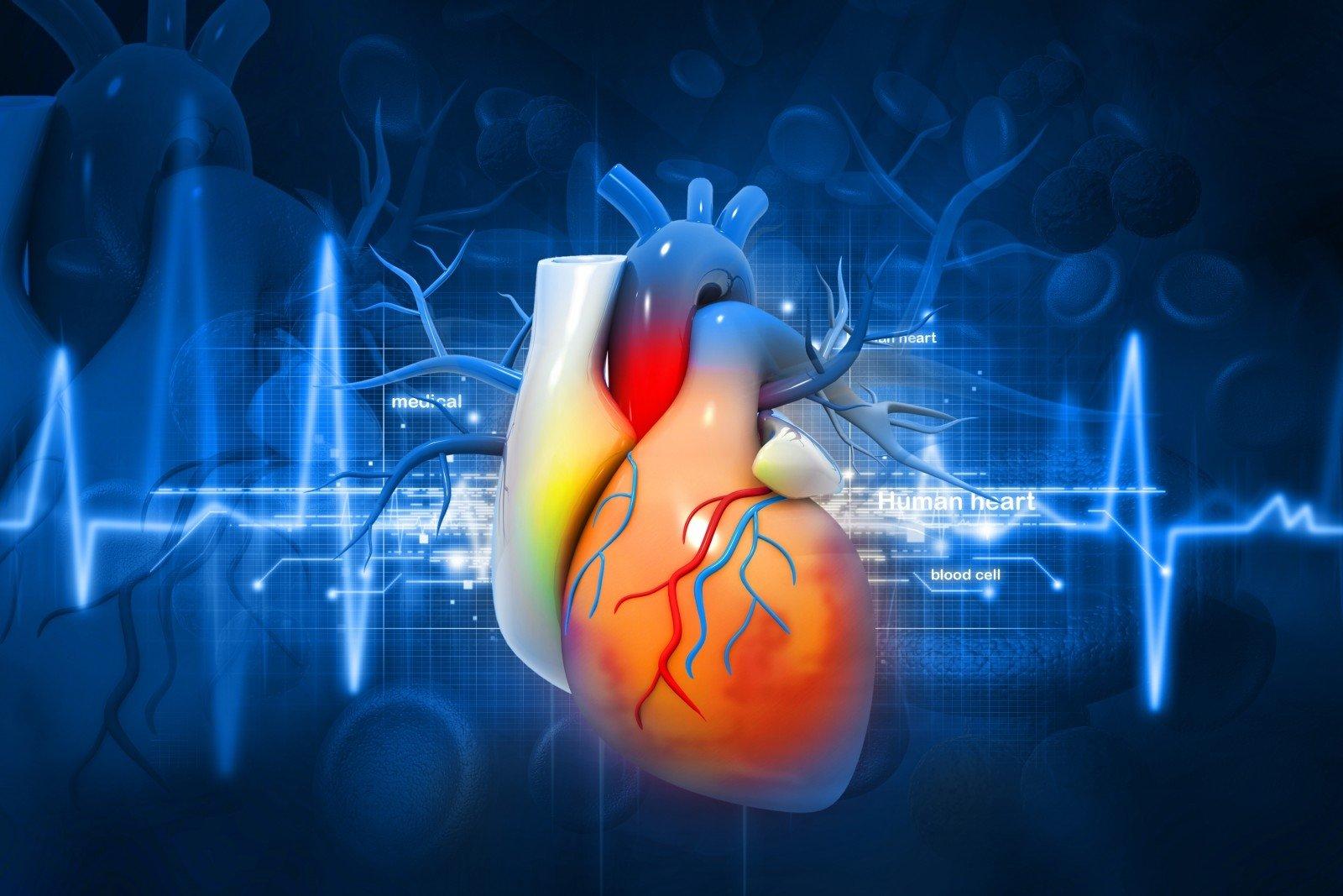 padidėjusi širdies sveikata tachikardija kaip hipertenzijos simptomas