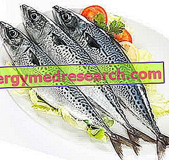 valgant žuvis su hipertenzija
