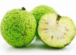Adomo obuolys ir hipertenzija)