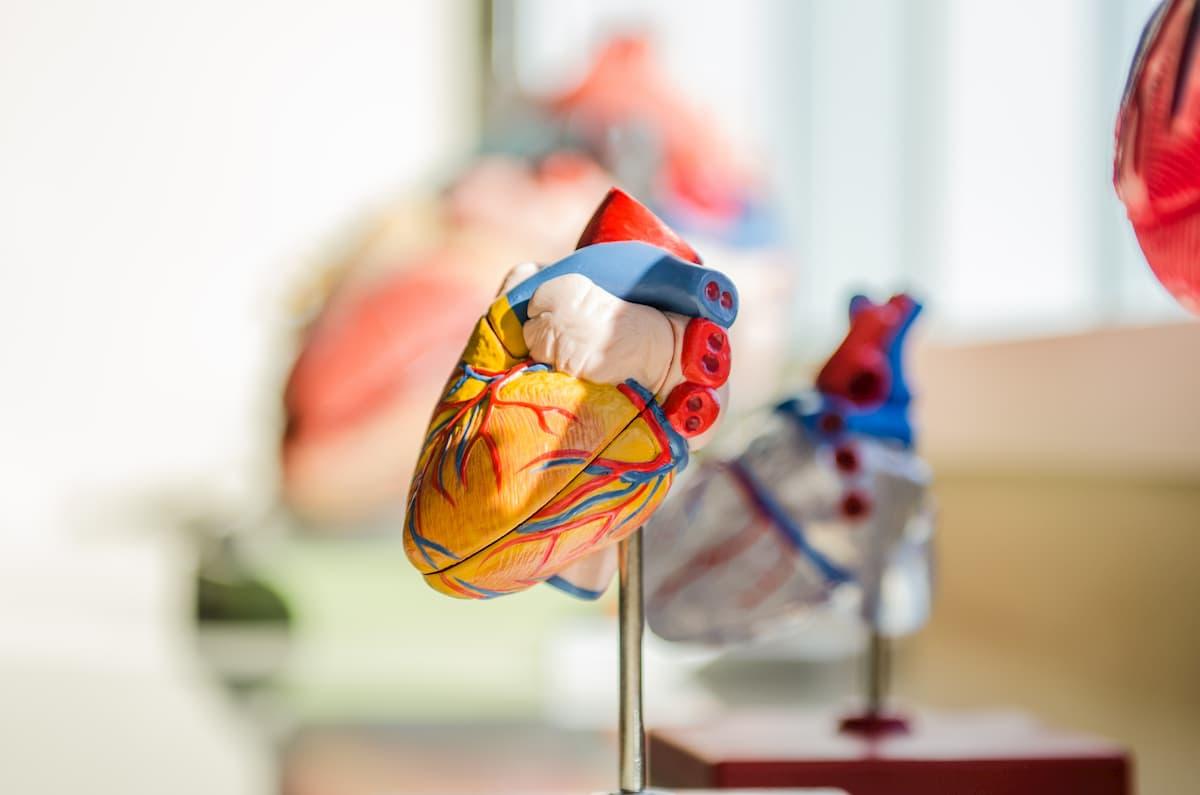 hipertenzijos būdai