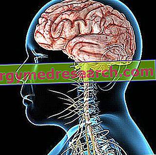 hipertenzija ir smegenų auglys)