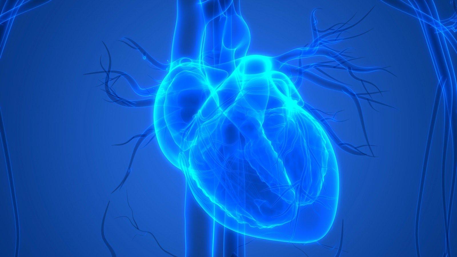 padidėjusi širdies sveikata hipertenzija ir išsiplėtusi širdis