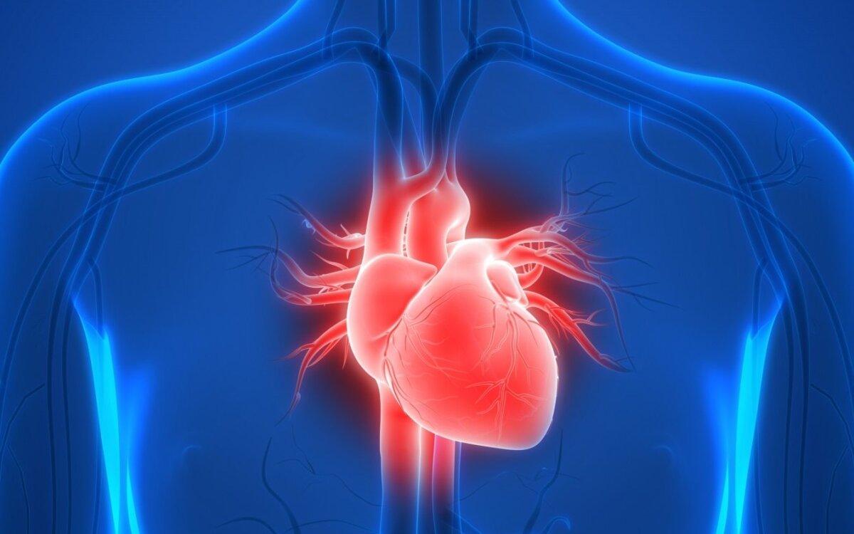 visa istorija svarbiausia liga širdies naujienos sveikata hipertenzija kaklo skausmas